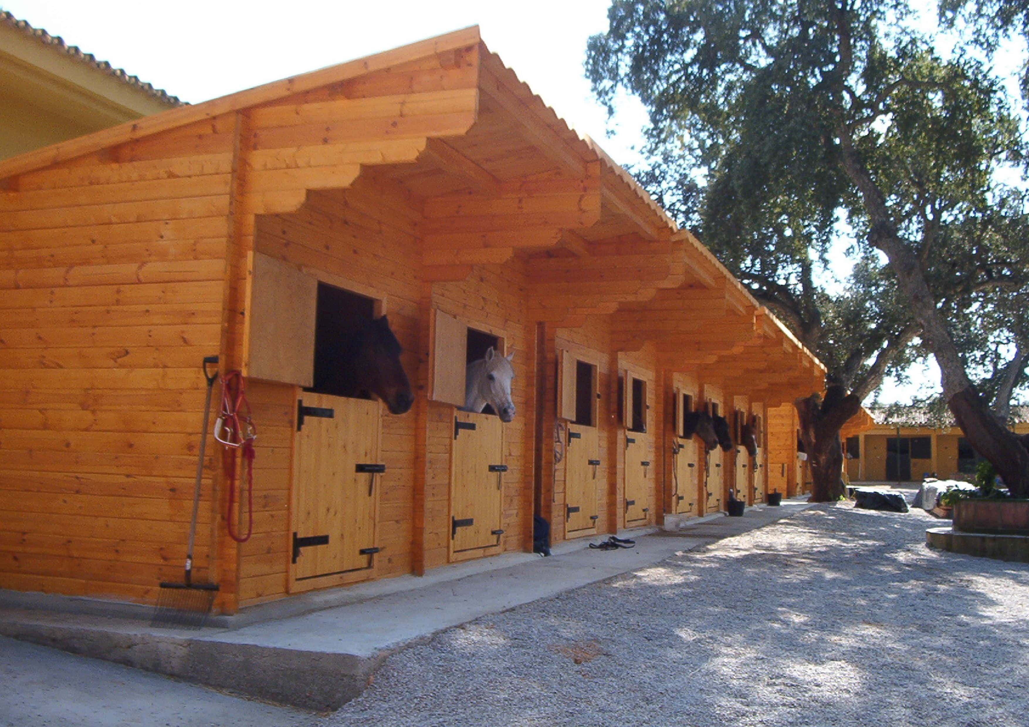 7 Things To Know About Horse Stables Palmatin Com